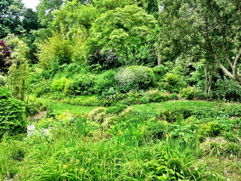 dulwich park 2