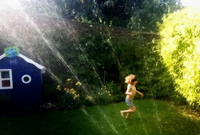 sprinkler chasing