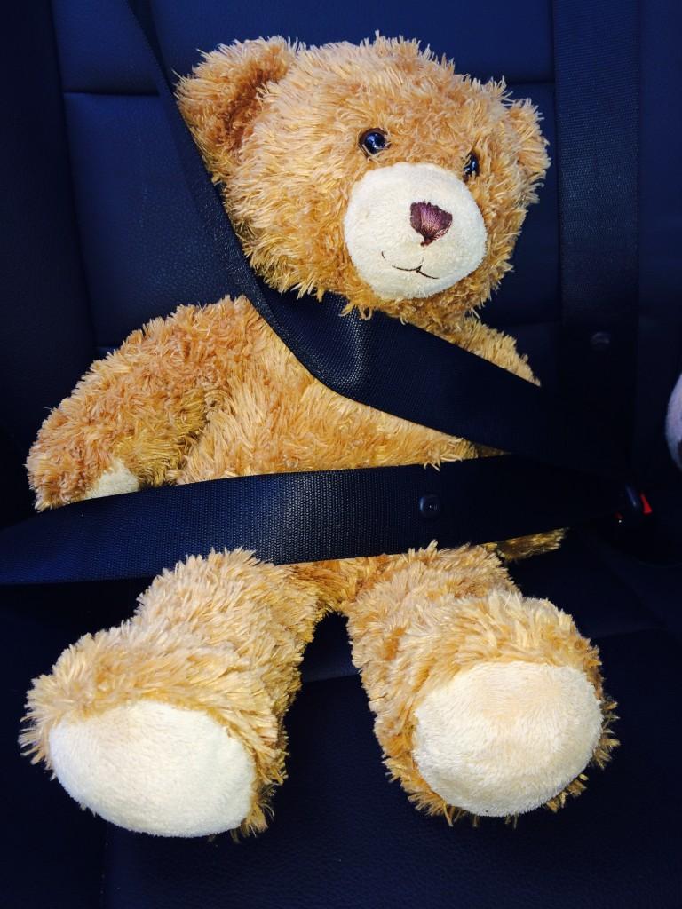 seat belt on