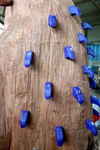 purple prickles
