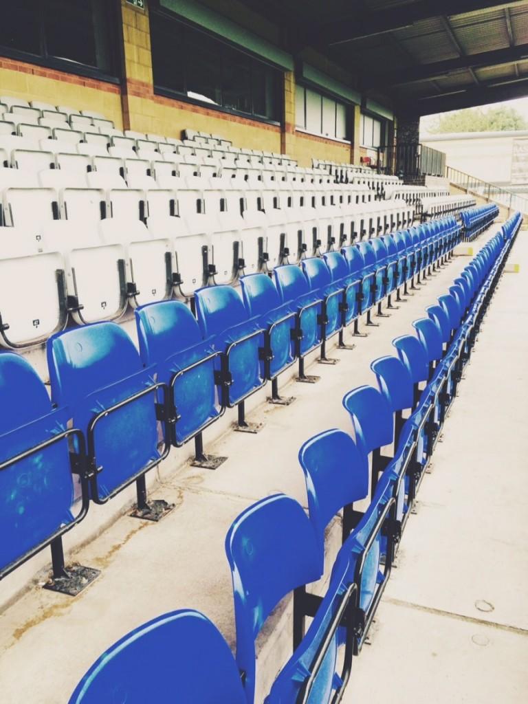 dulwich hamlet football club