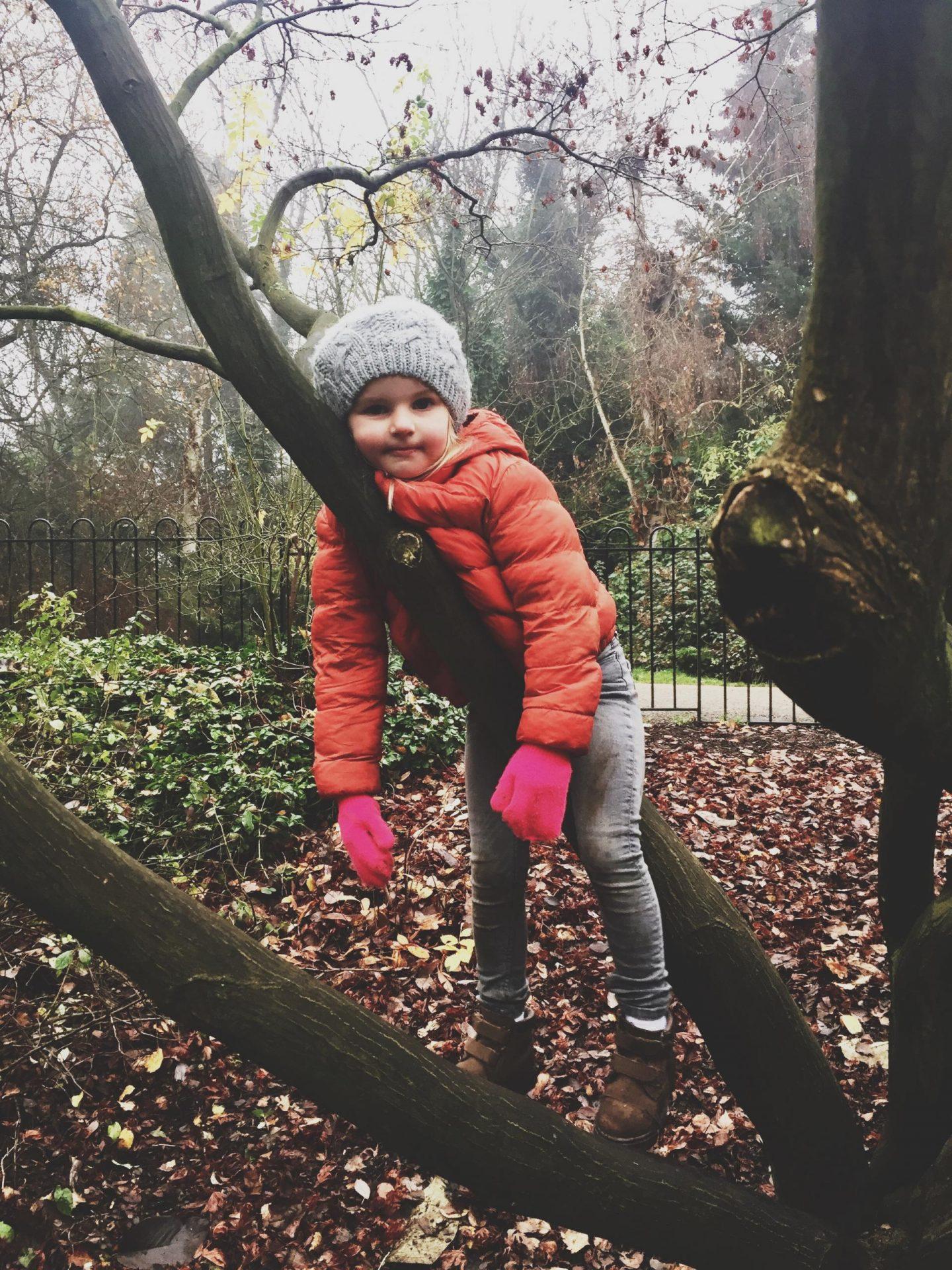 bops in a tree