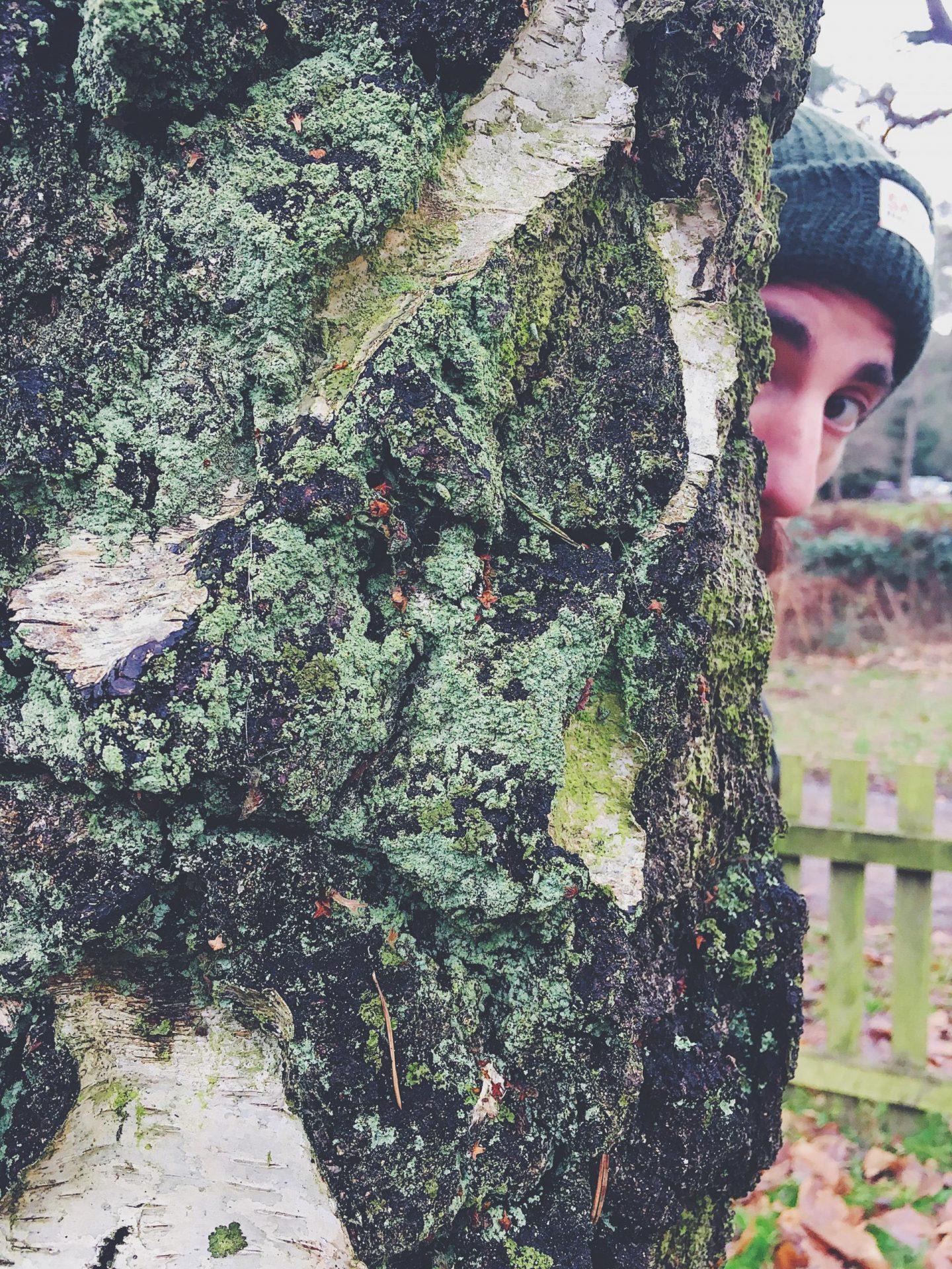 sandringham hide and seek