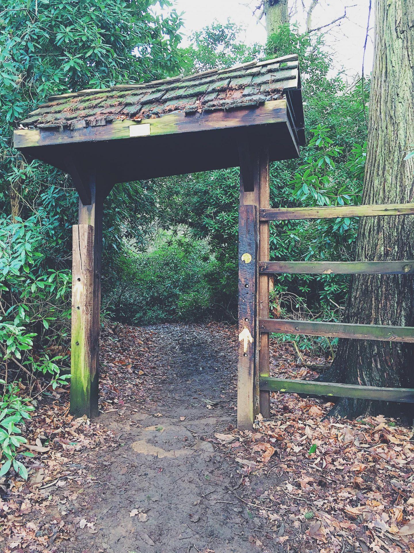 sandringham trail